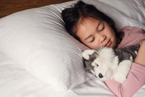 Young little mixed race Asian girl sleeping in bed with her dog soft toy, bedtime routine, wake up kid for school, children sleep disorder